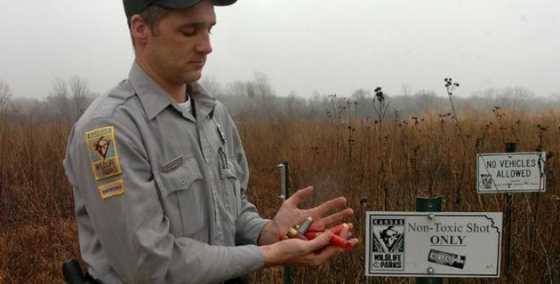 Aaron Hendicks a Kansas Wildlife and Parks enforcement officer holds up some lead shotgun shells, on the west side of Clinton Lake where hunting is permitted but signs tell of the hazard of using lead shot. This past weekend Hendrichs brougth in Bald Eagle to Operation Wildlife near Lindwood, which had been infected by lead posing due to eating of wildlilfe that also had lead in it's system and make the eagel sick.