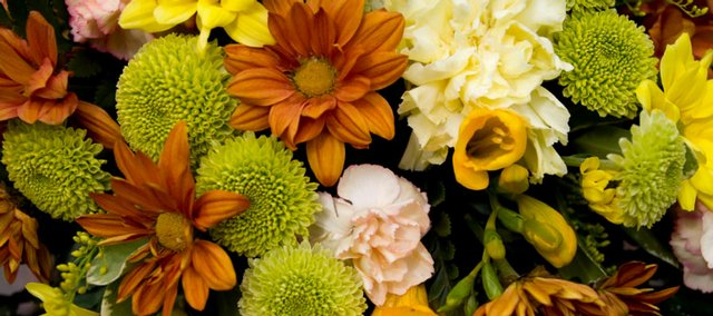 Flowers with rich autumn colors include chrysanthemums, carnations, goldenrod and freesias.