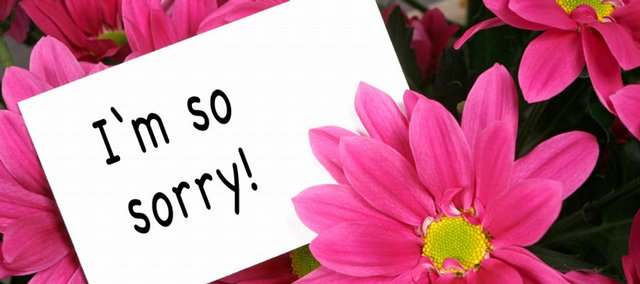Are flowers an easy out when it's time to say you're sorry? Steve Ilardi, associate professor of psychology at Kansas University, says the best apologies very often come with more than words.