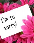 Are flowers an easy out when it&#39;s time to say you&#39;re sorry? Steve Ilardi, associate professor of psychology at Kansas University, says the best apologies very often come with more than words.