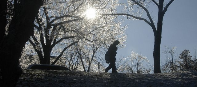 Ice melts off trees Thursday at Kansas University as a student walks on Jayhawk Boulevard. Temperatures were above freezing for most of the day, erasing remnants of Monday night's ice storm.