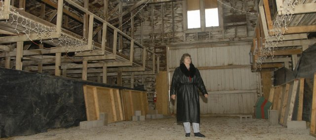 Diane Niehoff, president of the Lumberyard Arts Center board of directors, walks through the former lumberyard at 718 High St. in Baldwin City. She and others hope to turn the site into an arts center. Niehoff says she expects fundraising to pick up on the project next year.