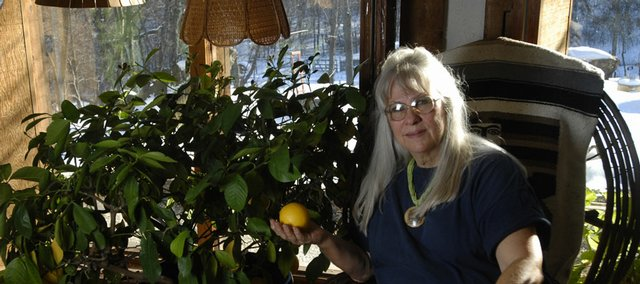 "Ocoee Miller, who lives near Lone Star, has been gardening for 50 years. Her lemon tree, shown above, is more than 30 years old. ""I delight in growing plants that are 'impossible' to grow in Kansas,"" she says. ""If you don't try, you won't know what you can accomplish."""