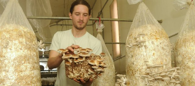 Bob Bruce, 25, chief mushroom technician for Wakarusa Valley Farm, works on growing and harvesting mushrooms at the farm, which is southwest of Lawrence.
