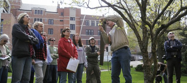 Craig Freeman, a botanist with the R. L. McGregor Herbarium, discusses the blossoms on a flowering dogwood tree in front of KU's Spencer Museum of Art during a spring flora tour of campus.