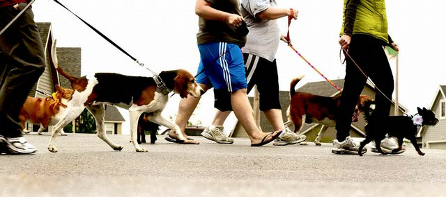 It was all for the dogs Saturday at the Mutt 'n' Strut walk at Sunflower School, where owners brought their pooches for the event's 13th anniversary in Lawrence. The charity walk's proceeds, estimated at $30,000, benefited the Lawrence Humane Society.