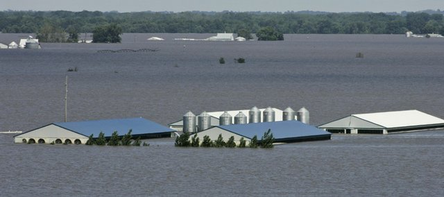 Floodwaters inundated this hog farm in Oakville, Iowa, which had been surrounded by corn fields, in this June 16 file photo. Beef, pork, poultry and even eggs, cheese and milk are expected to get more expensive as livestock owners go out of business or are forced to slaughter more animals to cope with rocketing costs for corn-based animal feed.