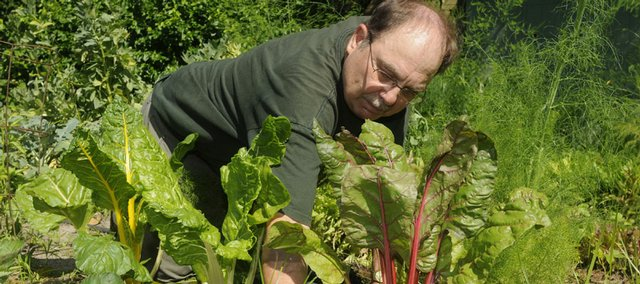 Jon Standing pulls weeds from his small but thriving kitchen garden. The Douglas County Master Gardener plants a variety of produce, including asparagus, lettuces, okra, fava beans, celery, onions and cucumbers.