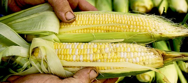 Galen Peters, of Lawrence, shows a customer the difference between two types of sweet corn at a recent Lawrence Farmers' Market. Farmers say corn is best shortly after it's picked.