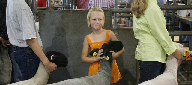 Reilly Stewart, 8, of Baldwin City, keeps a good grip on her sheep Sunday while waiting to sell it at the Douglas County Fair Livestock Sale at the fairgrounds. Reilly placed as a reserve grand champion in the sheep showmanship category this year, her first year showing. The sheep she showed weighed 109 pounds to her 40 pounds.