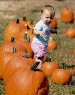 Pumpkins large and small catch the attention of Savannah Nelson, 11 months old, as she wanders through a field of the gourds Saturday at Lawrence Landscape, 1185 N. 1250 Road. Lawrence Landscape was one of many area farms that were host to the Kaw Valley Farm Tour on Saturday.