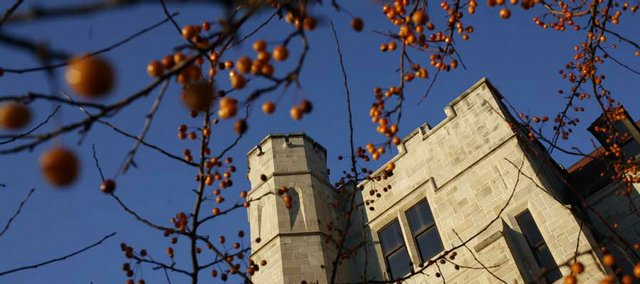 A Capital Pear tree stands with berries in bloom this week in front of Snow Hall on Kansas University's campus. Berries help brighten cold, wintry months.
