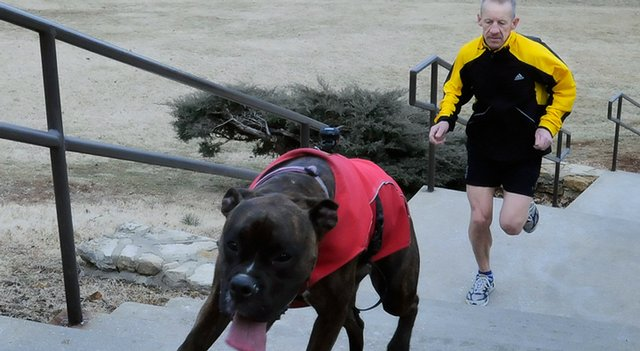 "Stair climber Keith Dowell, Lawrence, and his dog Spank race up a set of stairs west of Memorial Stadium on the campus of Kansas University in this Jan. 30, 2009 file photo. Dowell is set to compete in the ""Vertical Mile"" urban stair-climbing competition Feb. 20, 2011 in Cincinnati."