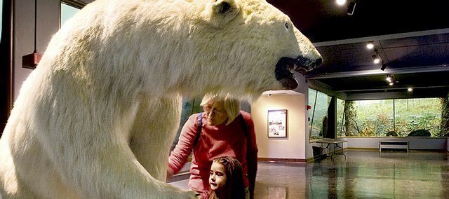 Sandy Stenger and granddaughter Gaby Canedo, 6, examine the fur on a polar bear in the panorama room at the KU Natural History Museum in this 2009 file photo. The Natural History Museum, like other museums on campus, has seen an upswing in visitors during the economic recession.