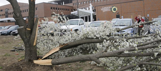 A large branch of a flowering Bradford Pear tree near the Lawrence Memorial Hospital parking lot was split off the tree during Monday's winds.