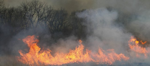 A controlled burn of the Baker Wetlands south of Lawrence along East 1500 Road on Thursday morning looks somewhat menacing but is being carefully supervised by Baker University Director of Natural Areas Roger Boyd. 