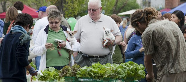 Topeka residents Stan and Carla Soper shop for fresh lettuce on the opening day of the Downtown Lawrence Farmers' Market in 2008. They brought along their two chihuahua dogs Millie, left, and Cassie.