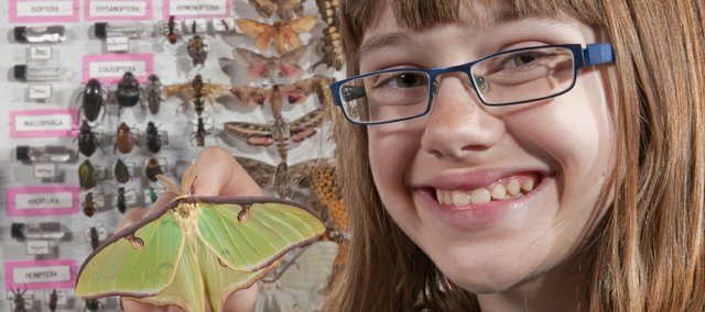 Aubrey Goscha, 11, holds a luna moth, a recent addition to her entomology collection. Goscha has been a member of the Clinton Eagles 4-H Club for about five years.