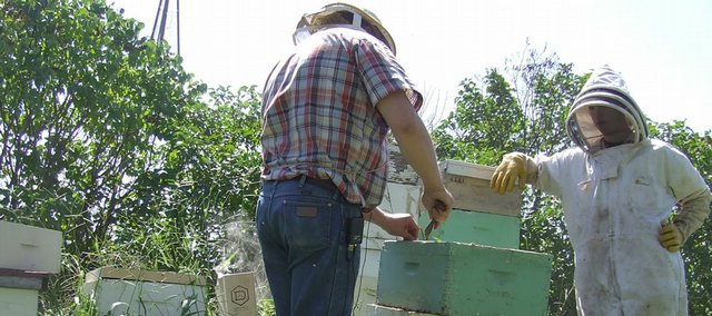 Anthony Schwager, right, and his father, Tony, remove and inspect the frames in their beehives in this November 2008 file photo. CNN and HLN will air features on Anthony's business, Anthony's Beehive, this weekend.