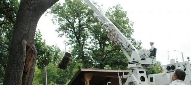 A Baldwin City crew grabs a chunk of log with a beehive in it from a damaged tree Tuesday, Aug. 18, 2009.