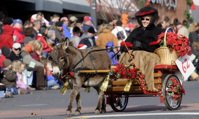 A rider from Rocking Horse Ranch in Pleasant Hill, Mo., guides her miniature cart led by a miniature Sicilian donkey during the  Lawrence Old-Fashioned Christmas Parade in this  Dec. 6, 2008, file photo.