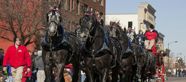 The big team of eight horses with Ames Percheron Farms from Jordan, Minn., appears downtown Saturday during the 17th annual Lawrence Old-Fashioned Christmas Parade.