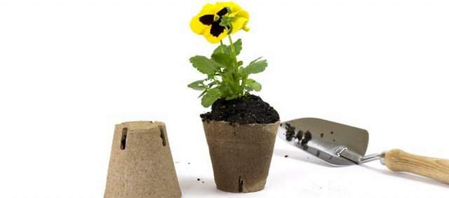Gardening trends for 2010 include going greener than just a green thumb — plan to see all kinds of eco-friendly items like planters made from recyclable material.