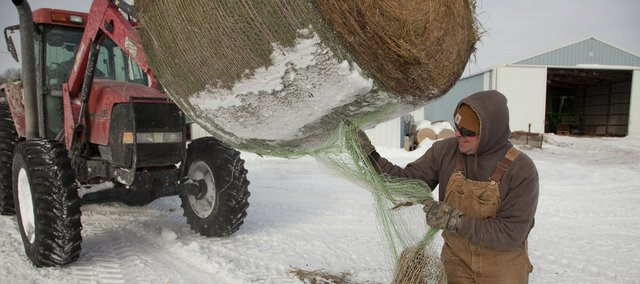 Mike Craig, of Baldwin City, gets bales of hay ready Friday for cattle. The extreme cold has posed special problems for agricultural workers and others who spend a lot of time outdoors.