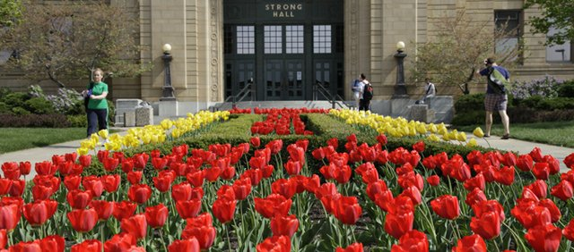 Strong Hall on the Kansas University campus has a carpet of red and yellow tulips this time of year.