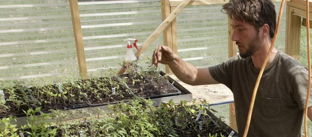 Avery Lominska works on seedlings in the greenhouse he attached to his home. The greenhouse allows him to start seeds earlier in the season.
