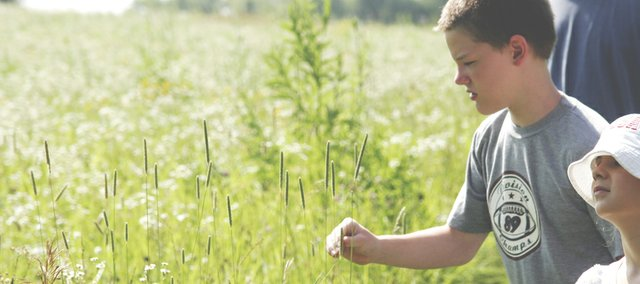 Vincent, a Big Brothers Big Sisters participant, touches grasses at the Guess Prairie northwest of Lawrence.