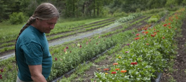 Kevin Irick looks over some of his more recent crops of flowers.