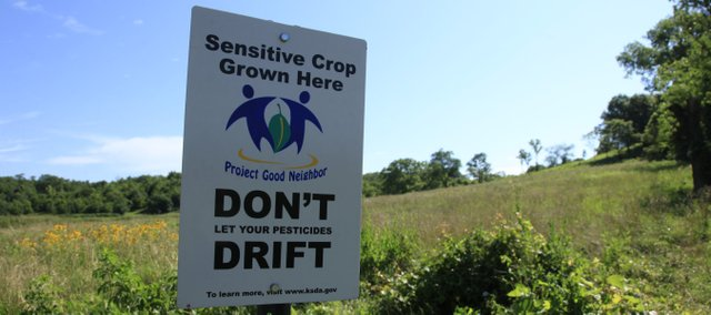 A no-spray sign stands at the bottom of the Hirds' land south of Lawrence. Sprays are damaging their grape crops, shown above.
