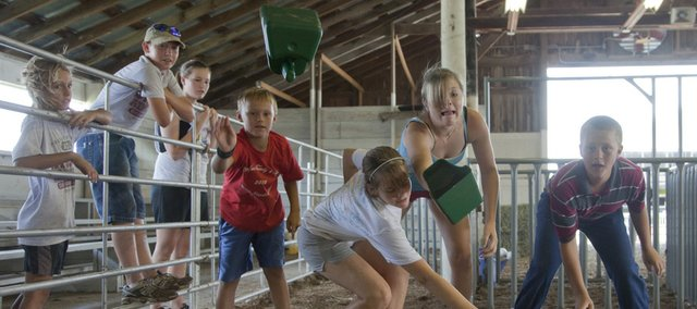 A team of four competes in the grain scoop toss during the Barnyard Olympics activities at the Douglas County Free Fair. Saturday was the final day of 4-H activities.