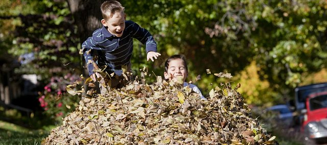 Jumping into a pile of leaves in their front yard at 735 Ohio, brothers Conner, left, and Carson Marsh, both 5, enjoyed the great fall weather in this October 2009 photo.