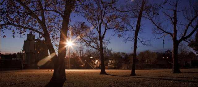 A high pressure sodium lamp burns brightly near trees located behind the Lawrence fire department's training tower at 19th and Haskell on Nov. 18, 2010.