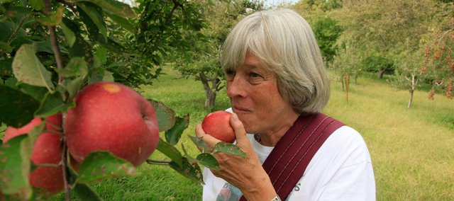Andrea Norris takes a bite from a just-picked apple at Beisecker Farms near Baldwin. Apple farming can be tough in Kansas because of insects, disease and soil conditions. If you want to grow apples, prepare to pay for mounds of organic or conventional pesticides.