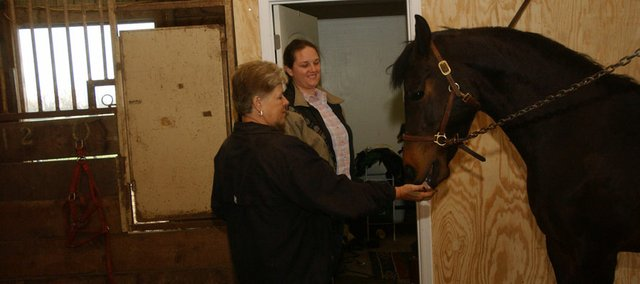 Valerie Francis gives a snack to Ignite, one of 23 Morgan horses she has at her Moriah Training Center, west of Tonganoxie, as trainer Laureli Orona looks on. Francis is looking to add children's programming at the farm with Orona's help.