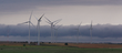 By 2050, 80 percent of the world's energy could be generated by renewable energy sources. Among the new sources of energy are wind turbines, like those at the Meridian Way Wind Farm in Cloud County.