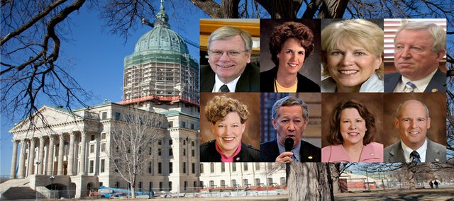 The Kansas Chamber of Commerce has thrown its support to challengers of eight moderate Republican senators. Clockwise from left, Tim Owens, Overland Park; Carolyn McGinn, Sedgwick; Terrie Huntington, Fairway; Steve Morris, Hugoton; Vicki Schmidt, Topeka; John Vratil, Leawood; Jean Schodorf, Wichita, and Pete Brungardt, Salina.