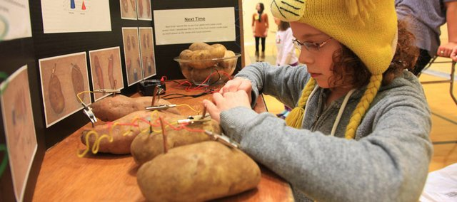 Emma Hertig, 11, a student at Deerfield School, sets up her potato power project Friday for this year's USD 497 District Science Fair at South Middle School.