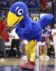 "The Centennial Jay, or C Jay, is presented to the Allen Fieldhouse crowd during a timeout in the first half of the KU vs. MU men's basketball game on Saturday, Feb. 25. The mascot from 1912 is complete with shoes ""for kicking opponents."""