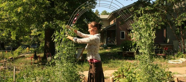 Tina Haladay picks some snow peas from her produce garden. Her garden is one of 21 included in the annual Lawrence Food Garden Tour this Saturday, June 2.