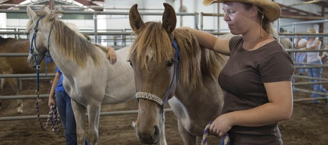 Nadine Bootz, an exchange student from Germany, shows one of the horses to be auctioned during a wild horse and burro sale Thursday at the Douglas County Fairgrounds. Bootz had worked with the horse to make it gentler to handle.