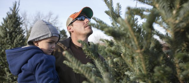 Chase Phillips, 3, and his father, Craig, of Berryton, search for the perfect Christmas tree Saturday at Strawberry Hill Christmas Tree Farm, located just west of Lawrence on U.S. Highway 40.