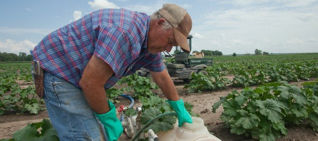 Larry Schaake spent time Wednesday tending to some irrigation for his pumpkins in rural Lawrence. He believes crop insurance should be part of any farm bill, which is currently being debated in Congress, as it protects farmers in case of unexpected events.