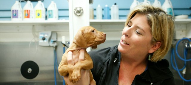 Amber Nickel, co-owner of Pawsh Wash, 1520 Wakarusa, baby talks with a Vizsla puppy after clipping its toenails on a recent day. Besides being a business owner, Nickel is a community activist involved with many organizations and charities including the Lawrence Humane Society and works as an advocate for Game Dog Guardian.