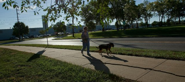 Mary Lake and her dog, Phog Allen, take an early morning walk along Peterson Road last week near the site where a dog park was proposed last year.