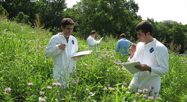 Kansas University students Ryan Chilcoat and Cody Barger record vegetation measurements in the Prairie Acre in June 2015. Pictured in back are students Will Hartenstein, left, and Drew Cleary. An effort to restore the acre is underway.
