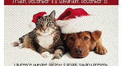 """The Lawrence Humane Society is bringing adoptable dogs to Briggs Subaru this Friday and Saturday for its """"Whisker Wonderland"""" event."""